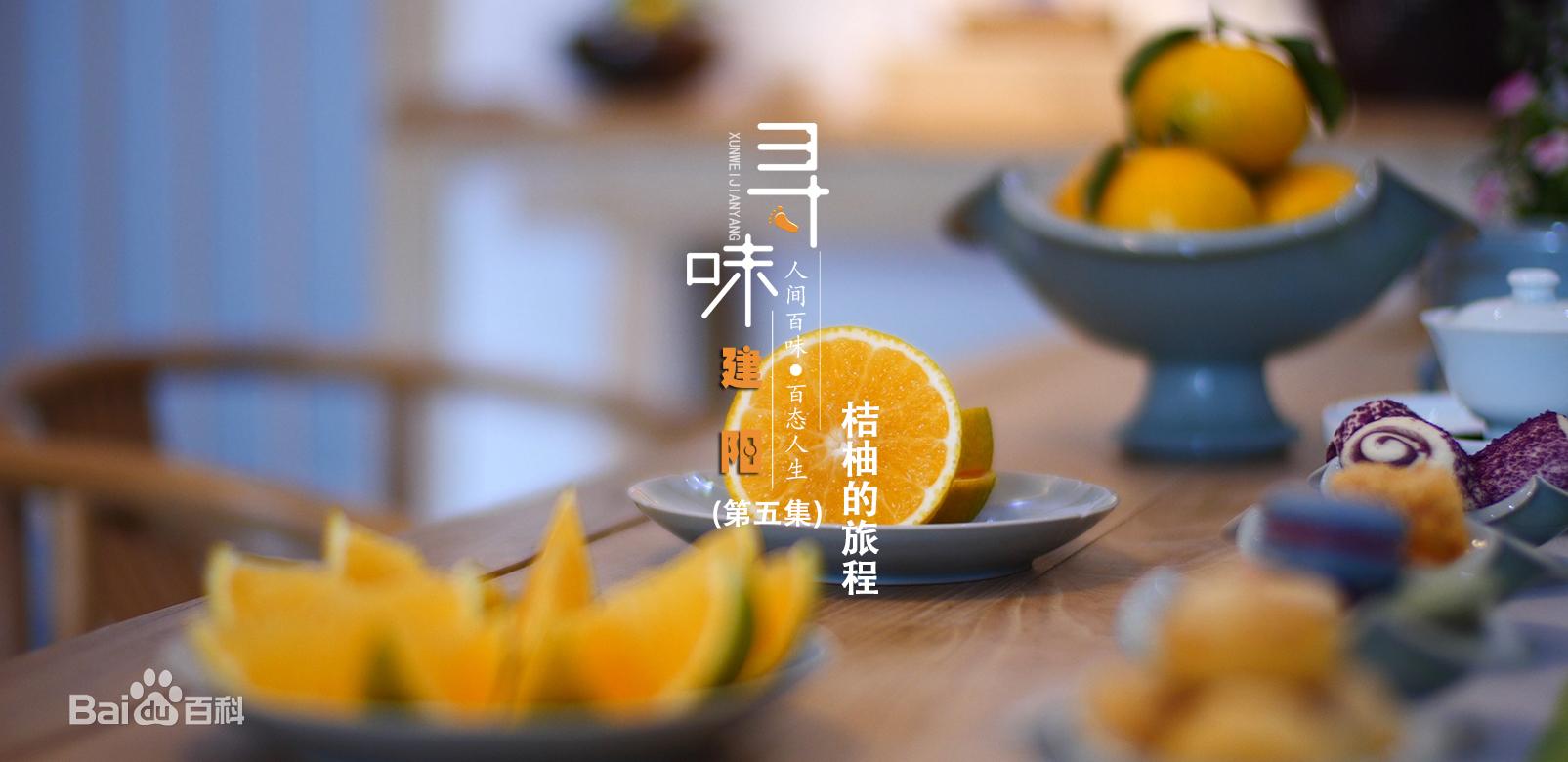 人文美食的纪录片《寻味建阳》第五集:桔柚的旅程